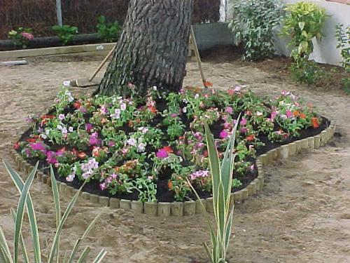 Bordure demi rondin ~ Bordure Jardin Demi Rondin Bois